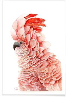 Pink parrot als Premium poster door Karolina Kijak | JUNIQE