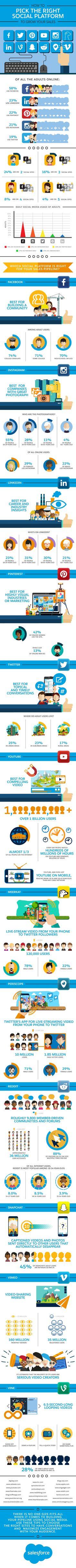 Elige la mejor plataforma para tu marca, conoce los perfiles de los usuarios que las utilizan. Infografía en inglés. #CommunityManager