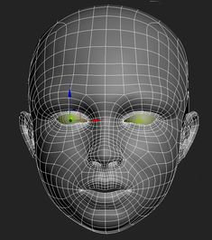 16 Best head/face topology images in 2013 | Face topology