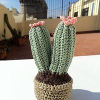 Cactus 1 amigurumi