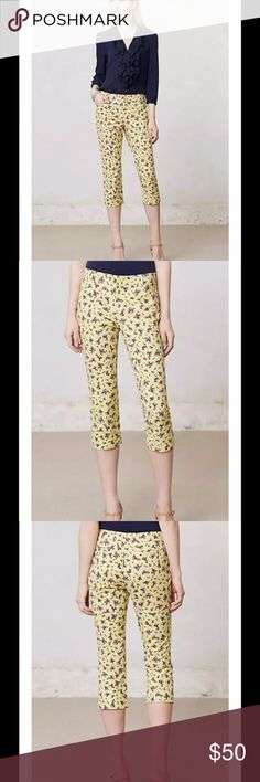 Anthropologie Retro Flora Charlie Crops Capris Anthropologie Retro Flora Charlie Crops Capris  Fabulously feminine piece 5-Pocket design Snug fit, crop length, low rise  Inspired by the tailoring of a gent's suit, our exclusive Charlie is the talk of the town. This cheery floral pair boasts a slightly shorter calf-grazing crop but the same great curve-hugging fit. We like to think of them as the ultimate petal pushers.  By Cartonnier Front, back welt pockets Cotton, spandex Machine wash…