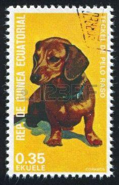 GUINEA - 1.974    Sello impreso por Guinea, muestra Teckel.