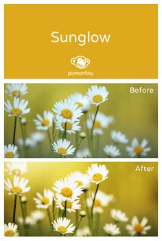 Brighten up your photo with the Sunglow effect. It just makes you want to put on your sunglasses.
