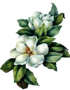 Resultado de imagen para magnolias flores