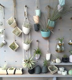 16 Modern and Elegant Vertical Wall Planter Pots Ideas - indoorjungle Green Plants, Air Plants, Potted Plants, Indoor Plants, Vertical Wall Planters, Hanging Planters, Planter Pots, Wicking Beds, Plants Are Friends