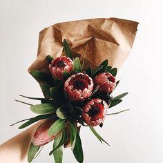 floral / @bellafosterblog