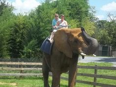 Natural Bridge Zoo in Virginia. Scratch this off my bucket list!!! DONE!! #Green's