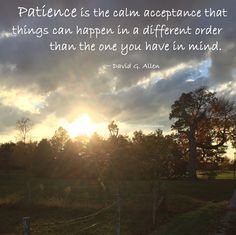 """""""Patience is the calm acceptance that things can happen in a different order than the one you have in mind."""" ~ David G. Allen  #quote"""