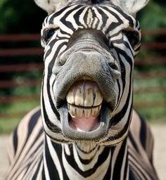La cara que se te queda cuando suena el despertador #felizlunes#besos#abrazos