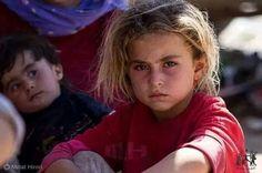 From North of Iraq. .Sinjar