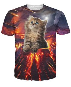 1124ce70 44 Best cat shirt are a-meows-zing images | Cat shirts, 3d t shirts ...