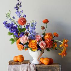 Beautiful Flowers Pictures, Beautiful Flowers Garden, Pretty Flowers, Colorful Flowers, Exotic Flowers, Purple Flowers, Flower Centerpieces, Flower Vases, Flower Decorations