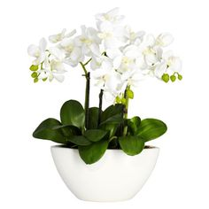 Nearly Natural 4804 Phalaenopsis Silk Flower Arrangement, White Nearly Natural http://www.amazon.com/dp/B004WABYG8/ref=cm_sw_r_pi_dp_L.LOtb17E2SXP3GJ $39.61