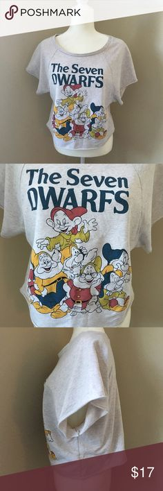 {Forever 21} Disney The Seven Dwarfs Shirt Show your love for Disney in this like new shirt!  It fits like a true Small and feels like a thin sweatshirt. Forever 21 Tops Tees - Short Sleeve