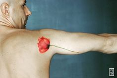 #gilbertavita #gilbertavitatattoo #vita #vitatattoo #tattoo #tatuaggio #papavero #papaverotattoo #poppy #poppytattoo #pavot #pavottattoo #fiori #fioritattoo #flowers #flowertattoo #red #redtattoo #watercolor #watercolorstattoo #puro #purotattoostudio #milano #milan