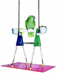 Wow, I have one of these triangular table top perches that is shown here incorporated into a hanging bid gym... I could turn mine into this and Gunther will love it!!