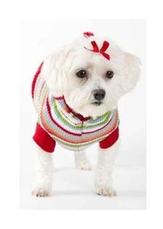 Free dog sweater knitting patterns