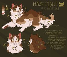 These Four Cat Warrior Personality Character and Their Traits That You May Have One Warrior Cats Series, Warrior Cats Fan Art, Warrior Cat Drawings, Warrior Cats Comics, Cat Character, Character Design, Cat Oc, Cat Reference, Super Cat