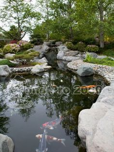 Underwater Pond Liner Patch Kit Saves Your Ert