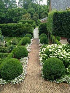 jardin paysagé, jolie composition de buis et fleurs