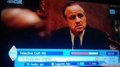 Agora você vem a mim e diz 'Don Corleone, faça justiça', mas você não pede com respeito. Você não oferece sua amizade. Você nem sequer pensar em me chamar de Padrinho.  Porque ficar sábado a noite em casa é quase de graça .