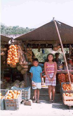 Fruit stand, road side, Veracruz, Mexico