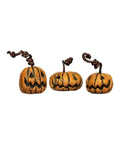 Take a look at this Curly Pumpkin Babies Figurine Set by Primitives by Kathy on #zulily today - if link no longer connects, try searching internet sources using item and/or manufacturer