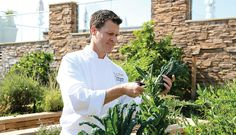 Meet The Chef Behind Five-Star Studio In Laguna Beach - Forbes Travel Guide