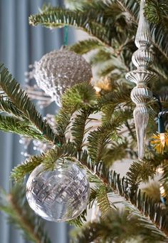 Silver and crystal ornaments glow in the light from the living room's many windows, giving the Christmas tree an organic radiance. - Traditional Home ®/ Photo: Gordon Beall