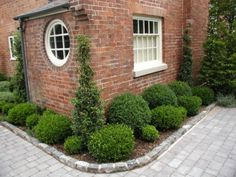 Love the boxwoods and greens against the brick background