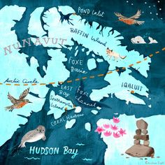 Christiane Engel - Arctic map illustration for Wellesley magazine the Red Knot migration route to the Arctic.