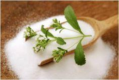 Najbolji prirodni zaslađivač - biljka stevija