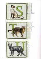 Gallery.ru / Foto # 7 - Francien van Westering - Katten borduren met Francien - anfisa1