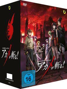 Akame ga Kill - DVD Box 1 (2 DVDs) + Sammelschuber - Limited Edition