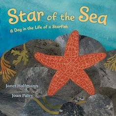 Book, Star of the Sea by Janet Halfmann