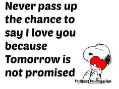 Never Pass Up A Chance To Say I Love You Because Tomorrow Is Never Promised love love quotes life quotes quotes quote love quote snoopy family quotes