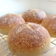 Sourdough Bread Bowls  | followpics.co