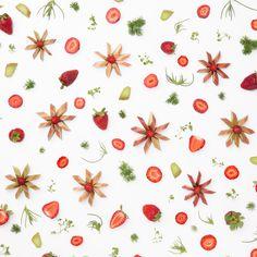 Strawberry and Rhubarb Food Collage @Julie Lee