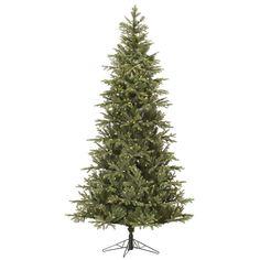 Slim Elk Frasier Tree