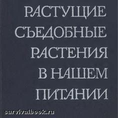 """Скачать """"Дикорастущие съедобные растения в нашем питании"""". А. К. Кощеев, 1981"""