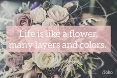 Life is a flower🌺 Good night! Life Is Like, Good Night, Flowers, Color, Instagram, Nighty Night, Colour, Royal Icing Flowers, Good Night Wishes