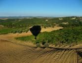 Ballooning Over Chianti Balloon Flights, Air Balloon, Shades Of Green, Places To See, Vines, Castle, Country Roads, Landscape