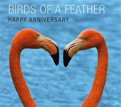 Say Happy Anniversary with @Regions Bank's free #SeetheGood E-Cards! #ecards #anniversary