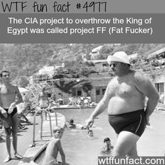CIA project to overthrow the King of Egypt - WTF fun facts
