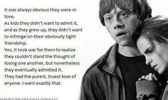 Traduction : Il était toujours évident qu'ils étaient amoureux. En tant qu'enfants, ils ne voulaient pas admettre que, et à mesure qu'ils grandissaient, ils ne voulaient pas enfreindre leur frénésie sévèrement restreinte. Oui, il a fallu de la guerre pour se rendre compte qu'ils ne pouvaient pas supporter la pensée de se perdre, mais néanmoins ils l'ont finalement admis. Ils avaient l'amour le plus pur et le plus vrai de tous. Je veux exactement cela