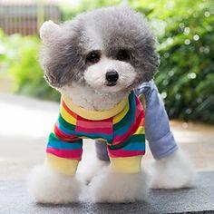 Adorável Coelho arco-íris padrão agasalho com capuz para Animais de estimação Cães (tamanhos variados) – BRL R$ 59,45