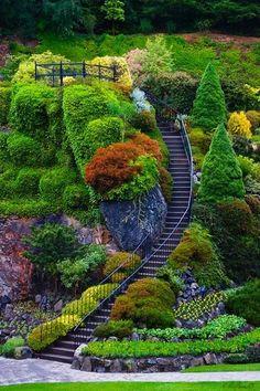 21 amazing mini garden design ideas for your backyard 15 Most Beautiful Gardens, Amazing Gardens, Landscape Design, Garden Design, Buchart Gardens, Victoria Canada, Garden Park, Mediterranean Garden, Public Garden