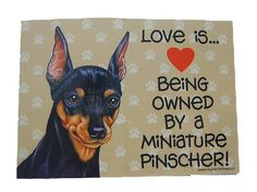 Love is Being Owned by a Miniature Pinscher Sign