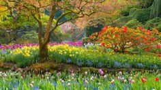 Webshots - Butchart Gardens in Spring, British Columbia
