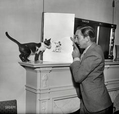 Walt Disney showing Mickey Mouse to  a cat